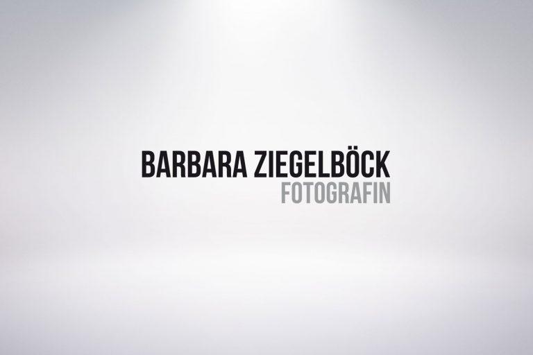 Logo Barbara Ziegelböck - Grafisches Buero